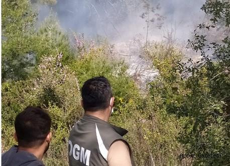 Arsuz'da Orman Yangını!