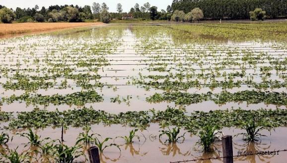 Zarar Gören Çiftçiye Destek İçin Çalışmalar Başlatıldı